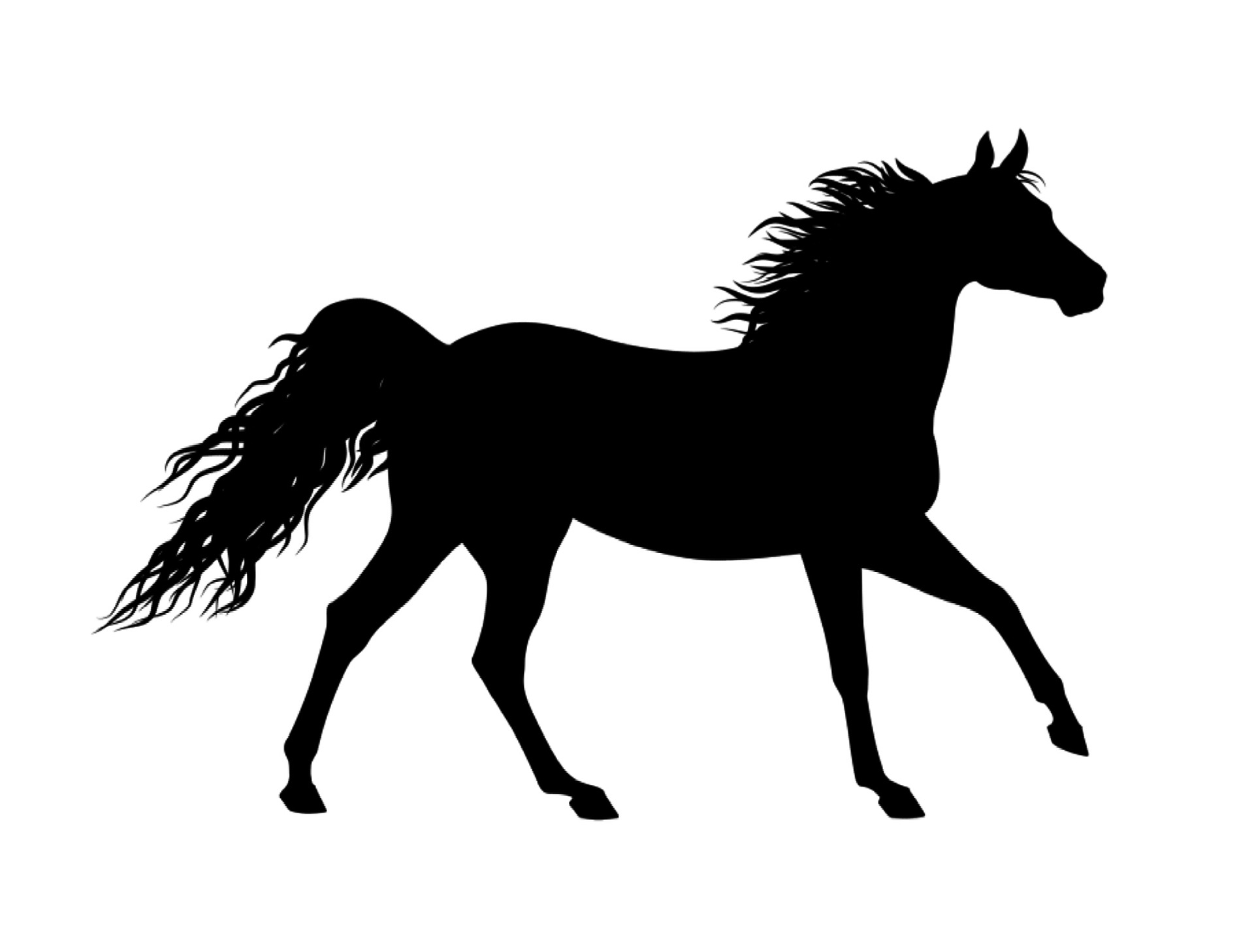 Großzügig Pferd Marionette Vorlage Bilder - Entry Level Resume ...